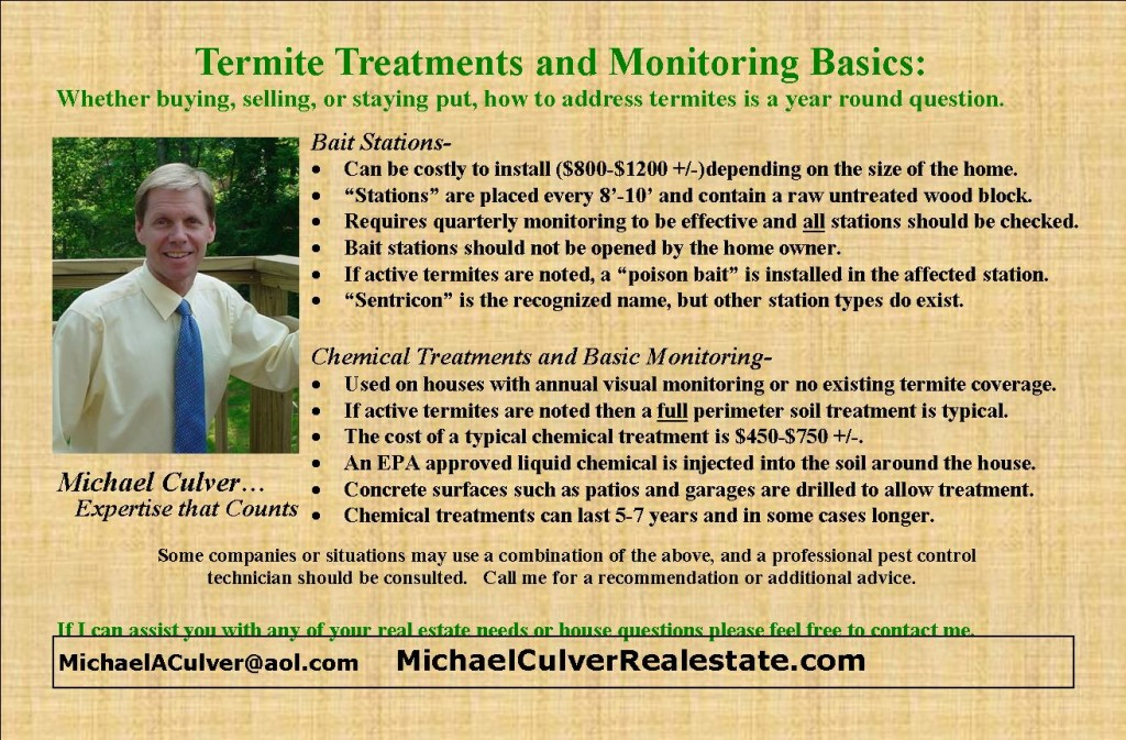 termite treatment and monitoring basics
